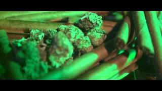 Fredo + Gee Money - Fulla Dat Shit [ft. @BGotLegs]