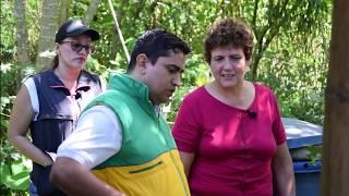 CAMPO VIRTUAL 1  PROGRAMA DE SOSTENIBILIDAD AMBIENTAL PORKCOLOMBIA