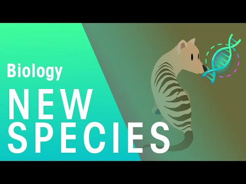 Formation of New Species by Speciation | Biology for All | FuseSchool