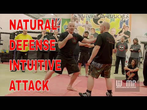 NATURAL DEFENSE INTUITIVE ATTACK JKD KALI