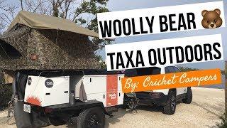 Woolly Bear Review Taxa Outdoors