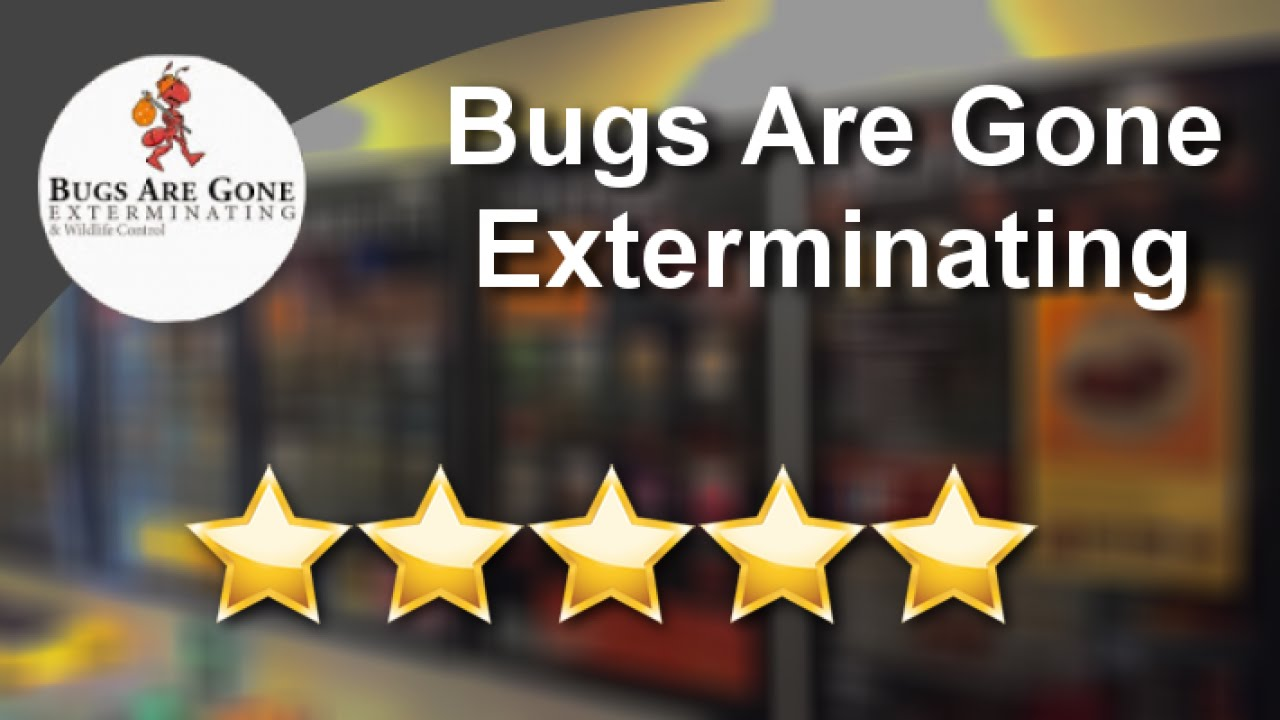 Bugs Are Gone Exterminating Brooklyn Outstanding 5 Star Review By Zahra A