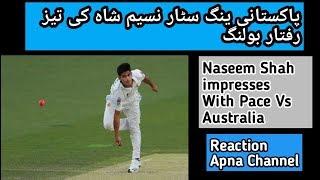 Pakistani Young Bowler Naseem Shah Ipmresses With Pace Vs Australia 2019 - Reaction Apna Channel