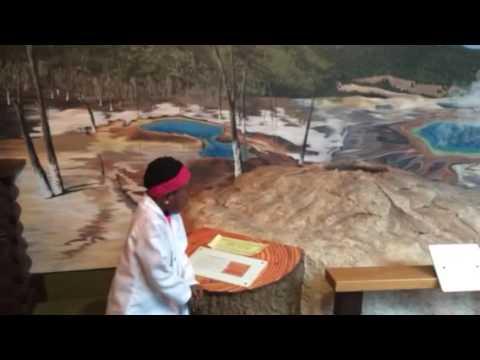 Museum of the Rockies - Geyser