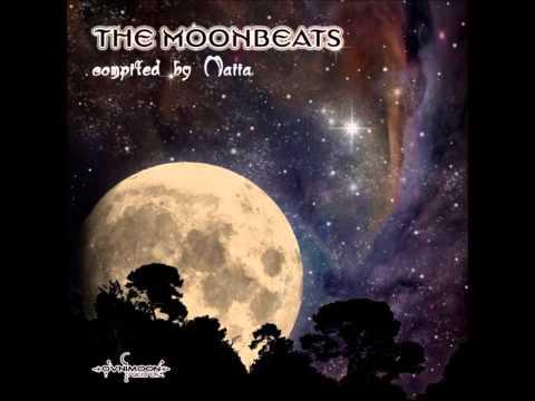 False Identity - The Vagrants Traipse [The Moonbeats]