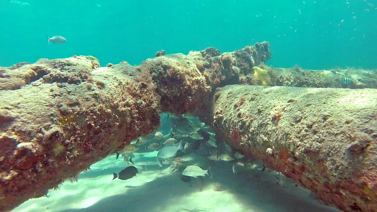 Snorkeling Worth Avenue Pier Debris Palm Beach You