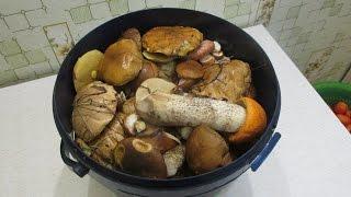 Как предварительно почистить грибы(Маслята,польские,челыши,осиновые,белые)