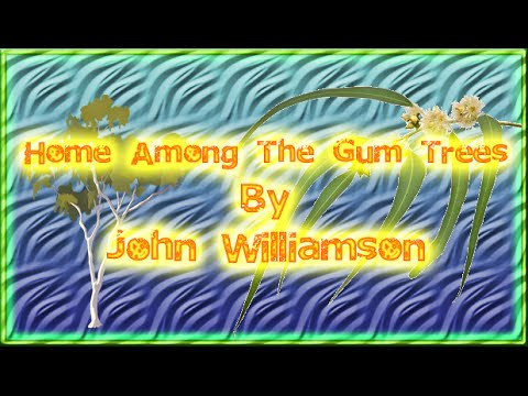 John williamson guitar chords
