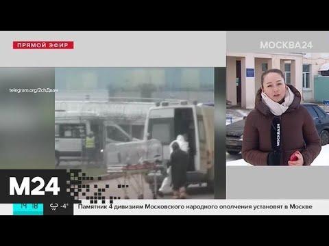 Источником коронавируса могли стать змеи – китайские ученые - Москва 24