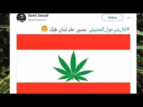 هل يصبح لبنان أول دولة عربية تشرع الحشيش؟  - نشر قبل 1 ساعة