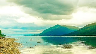 Celtic Relaxing Music: Beautiful Harp & Flute Music | Forest Meditation Music