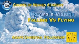 Original Dreams & Visions - Falling vs Flying