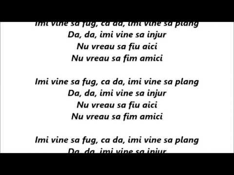 Ilinca - Amici  Versuri (Lyrics)