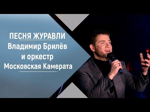 Смотреть клип Владимир Брилёв И Оркестр Московская Камерата - Журавли