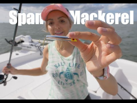 How To Catch Spanish Mackerel Tips And Tutorial (Beach, Pier, And Boat)