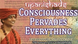Consciousness Pervades Everything - Living Advaita Series Upanishads by Nithyananda