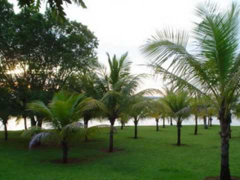 Cachoeira Dourada Minas Gerais fonte: i.ytimg.com
