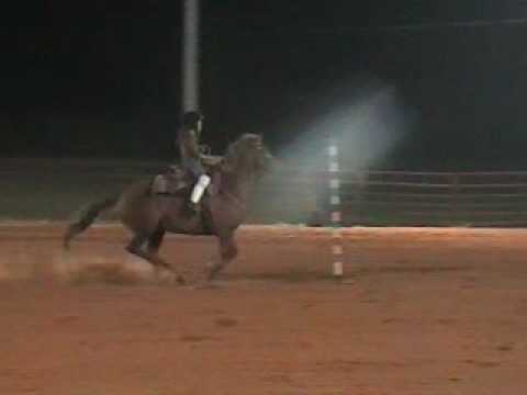 Miller Walker Pole Bending last Horse show- riding DIXIE