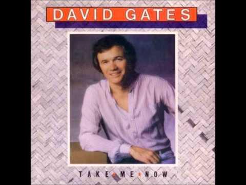 David Gates -Lady Valentine