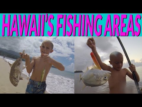 HAWAII FISHING AREAS - Places To FISH In HAWAII - Beaches, Piers, Rocky Shoreline