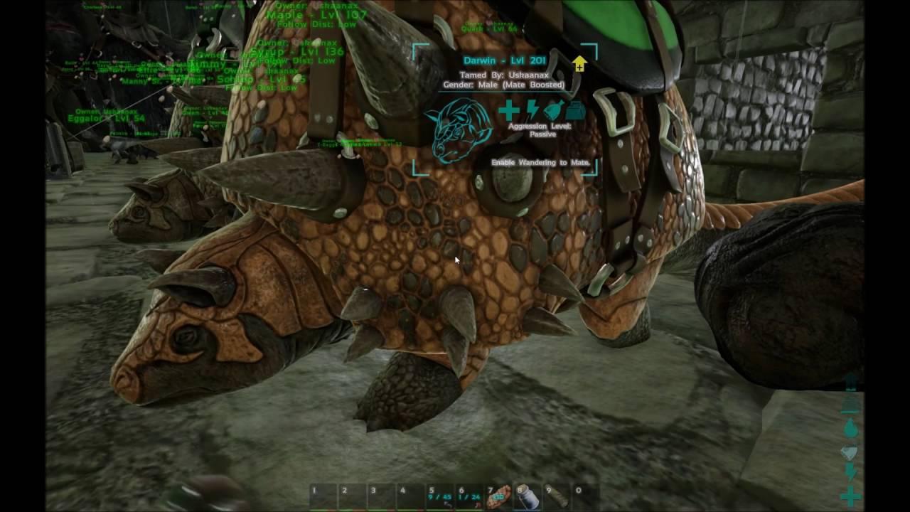Ark Survival Evolved Timer Bug Youtube
