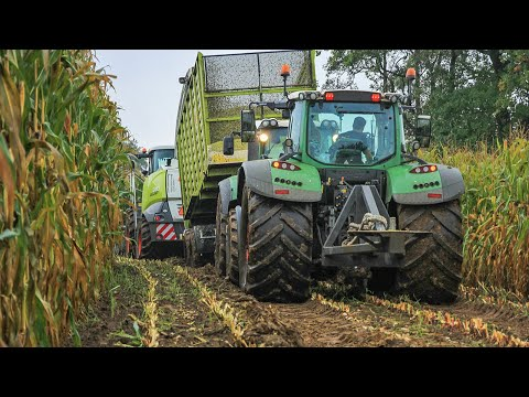 Modderen in de mais extreem 2015 | Harvesting maize in the mud extreme | BMWW | Claas Jaguar 940
