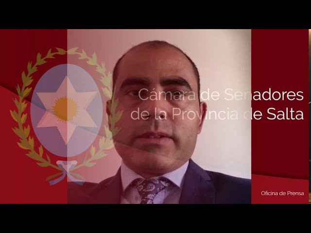 SERGIO SALDAÑO - SENADOR PROVINCIAL