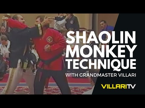 Villari's Shaolin Kempo Karate - Shaolin Monkey Technique