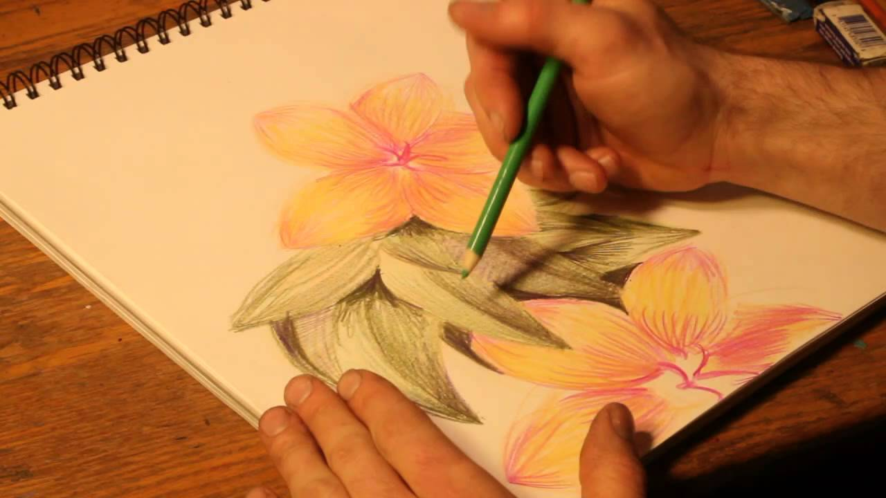 How To Draw Flowers With Colored Pencils Youtube