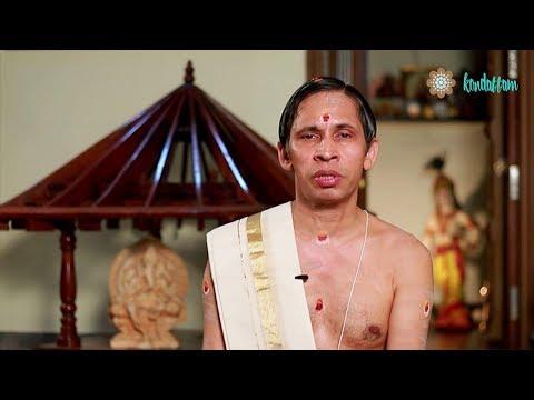 Bharani I November 2017 Nakshatraphalam I Kanippayyur Narayanan Namboodiripad