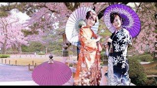[ Natural 4k ]  Japan Land & People || Tradition & Culture of Japan