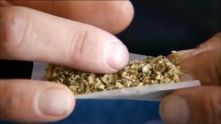 Study links legal pot to rise in car crashes