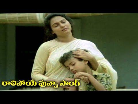 Matru Devo Bhava Movie Video Songs - Raalipoye Puvva