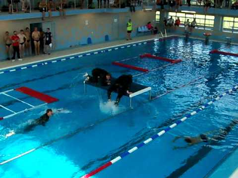 Cior Swim Obstacle Course Netherlands 2011 Youtube
