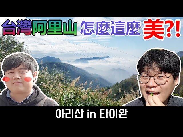台灣阿里山, 怎麼這麼美?! 奮起湖Vlog!_韓國歐巴