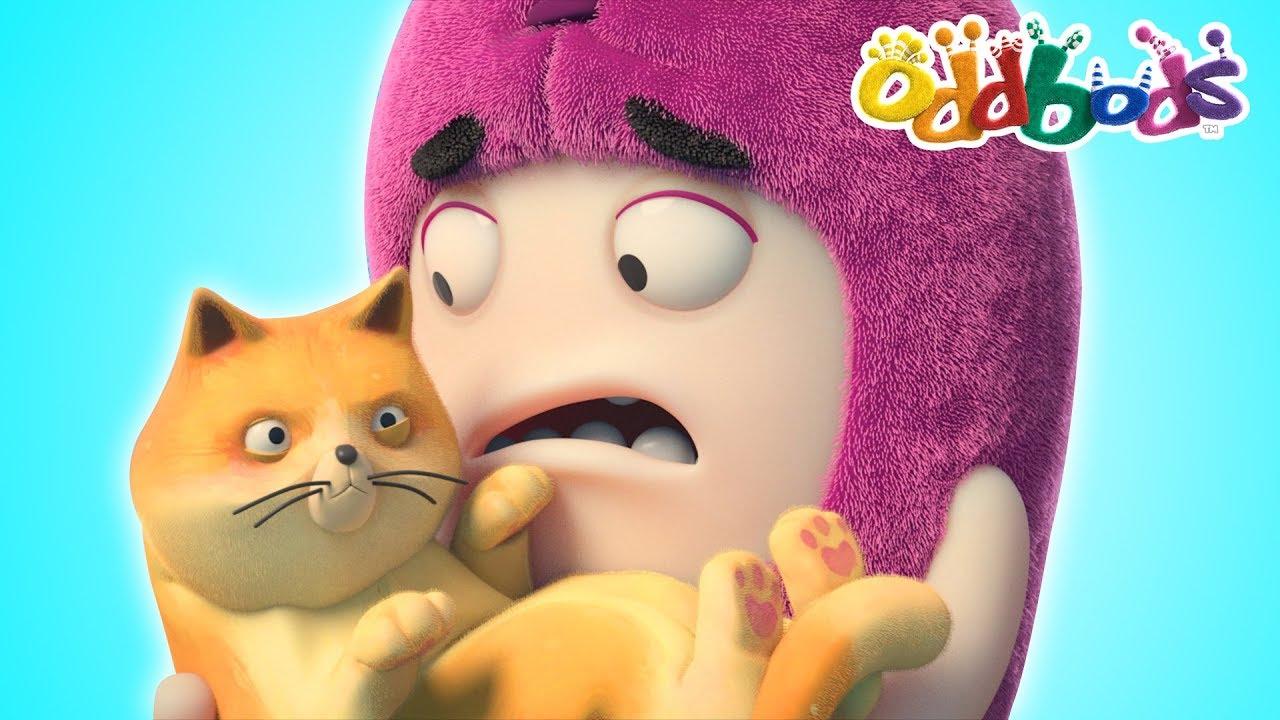 Oddbods | CAT CATASTROPHE | Full Episodes Compilation