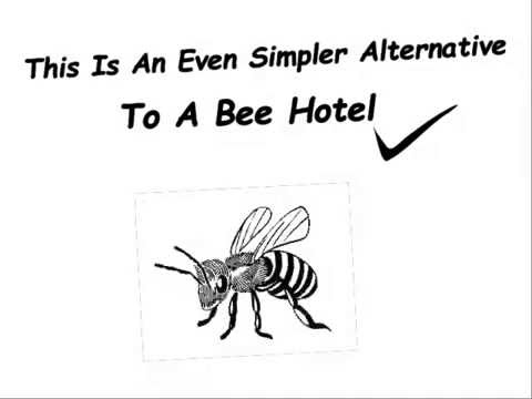 How To Make A Bee Post