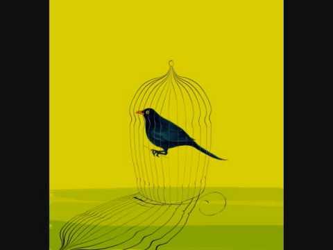 audiolibro l'uccellino in gabbia.wmv