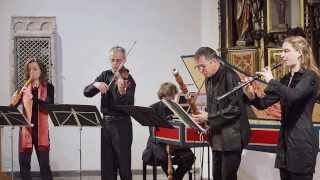 a vivaldi concerto f major rv 99 live la gioia kln