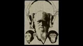 Musiikin evoluutio (Evolution of music) 1900-2014