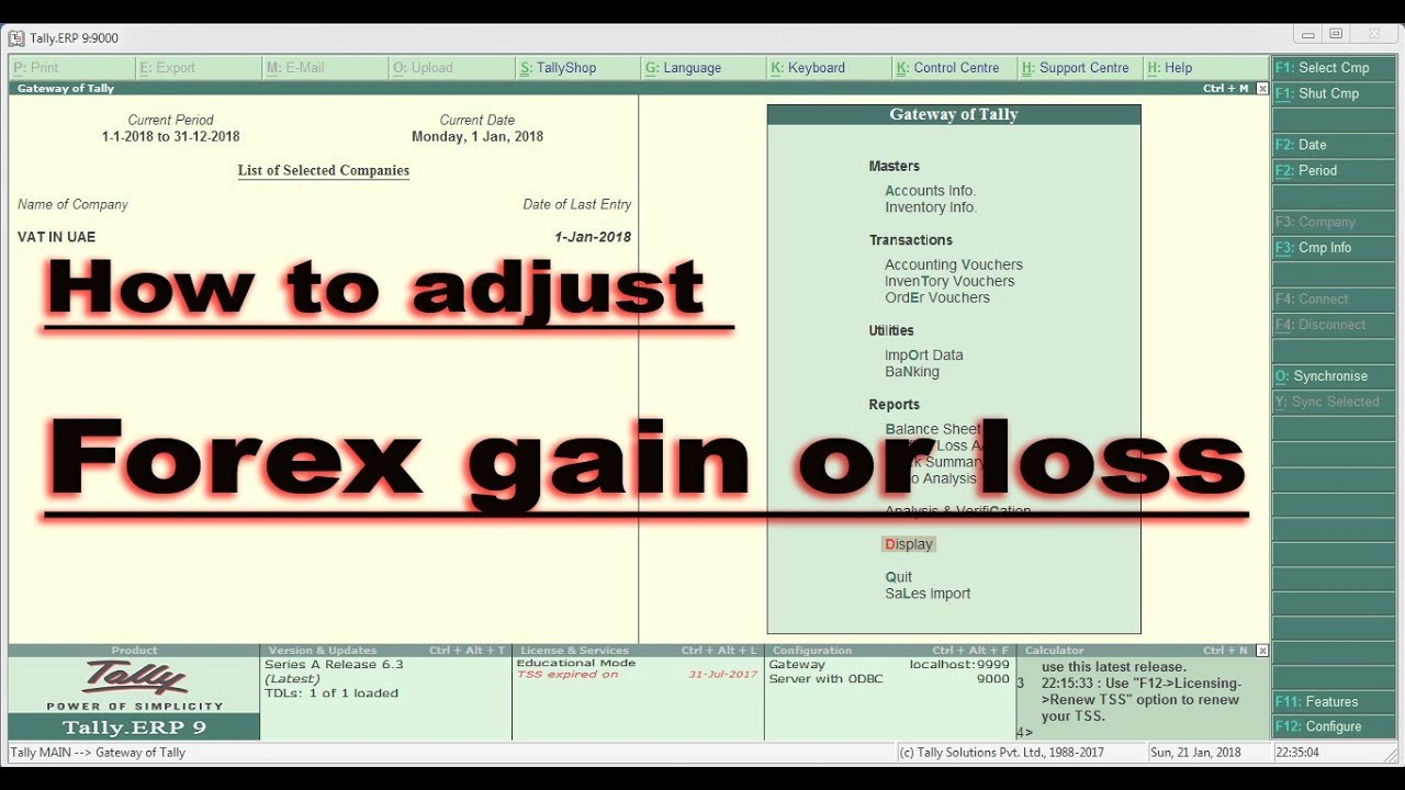 forex profit and loss calculator excel