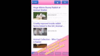 Video [HD Video Clip] for Android app 高画質動画をダウンロード download MP3, 3GP, MP4, WEBM, AVI, FLV Agustus 2018