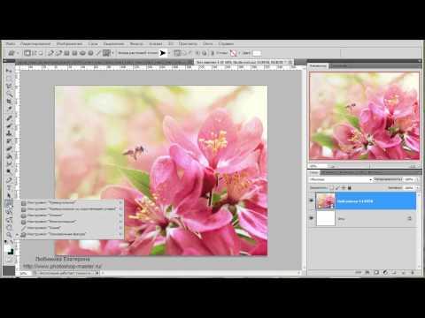 Пишем текст по контуру в программе Adobe Photoshop