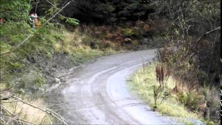 Wales Rally GB WRC 2014 SS2/6 + Andreas Mikkelsen Crash