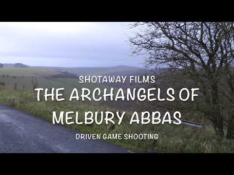 pheasant and partridge shooting featuring ''The Archangels Of Melbury Abbas' HD 1080p'