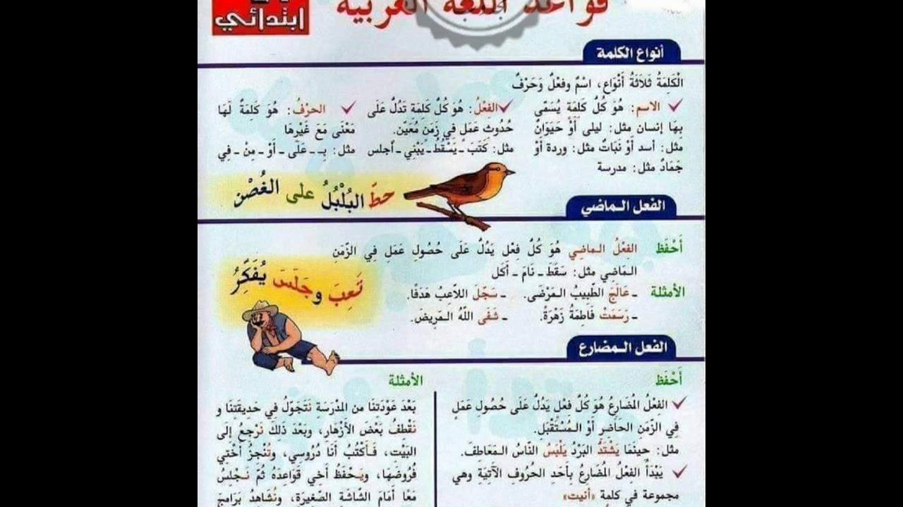 مطوية قواعد اللغة العربية