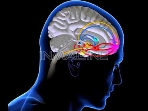 The Mind  Neville Johnson Part 1 of 8