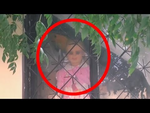 5 Scary Haunted Dolls CAUGHT MOVING ON CAMERA!