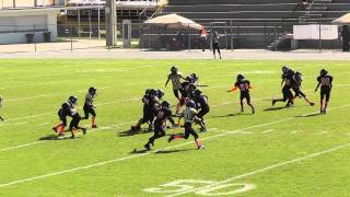 Clermont Knights Mighty Mites 2012