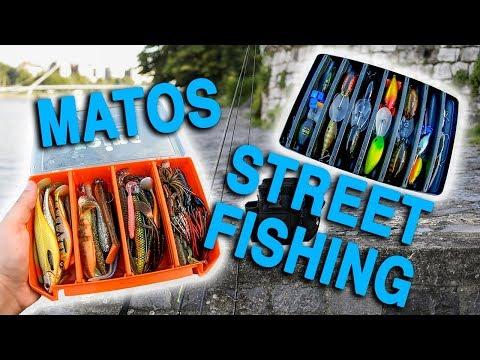STREET FISHING : Mon Matériel 2019